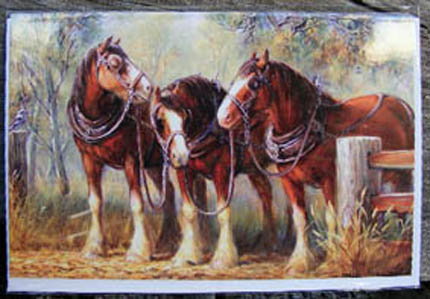 Link To Gallery of clydesdale cards